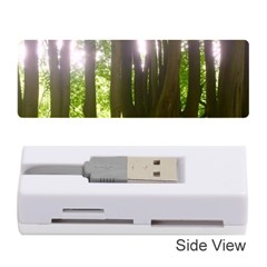 Tree Of Trees Memory Card Reader (stick)