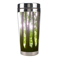 Tree Of Trees Stainless Steel Travel Tumblers