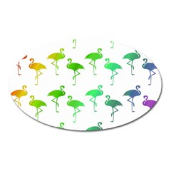 Flamingo Pattern Rainbow Colors Oval Magnet