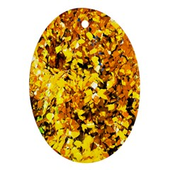 Birch Tree Yellow Leaves Ornament (oval)