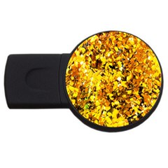 Birch Tree Yellow Leaves Usb Flash Drive Round (2 Gb) by FunnyCow