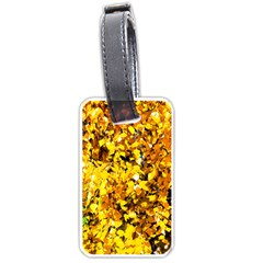 Birch Tree Yellow Leaves Luggage Tags (one Side)