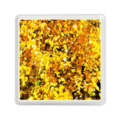 Birch Tree Yellow Leaves Memory Card Reader (square) by FunnyCow