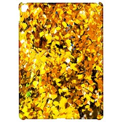 Birch Tree Yellow Leaves Apple Ipad Pro 12 9   Hardshell Case