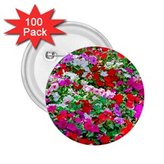 Colorful Petunia Flowers 2 25  Buttons (100 Pack)