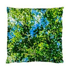 Forest   Strain Towards The Light Standard Cushion Case (one Side) by FunnyCow