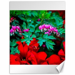 Bleeding Heart Flowers Canvas 18  X 24
