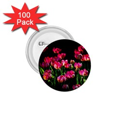 Pink Tulips Dark Background 1 75  Buttons (100 Pack)  by FunnyCow