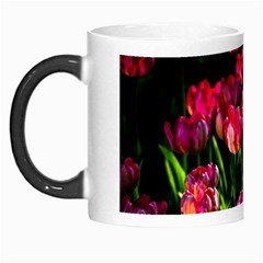 Pink Tulips Dark Background Morph Mugs