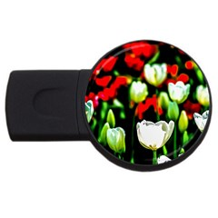 White And Red Sunlit Tulips Usb Flash Drive Round (4 Gb) by FunnyCow