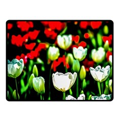 White And Red Sunlit Tulips Double Sided Fleece Blanket (small)  by FunnyCow