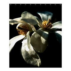 Two White Magnolia Flowers Shower Curtain 60  X 72  (medium)  by FunnyCow