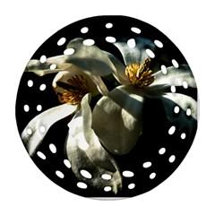 Two White Magnolia Flowers Round Filigree Ornament (two Sides)