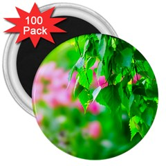 Green Birch Leaves, Pink Flowers 3  Magnets (100 Pack) by FunnyCow