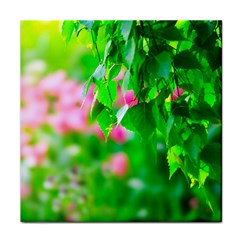 Green Birch Leaves, Pink Flowers Face Towel by FunnyCow