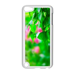 Green Birch Leaves, Pink Flowers Apple Ipod Touch 5 Case (white) by FunnyCow