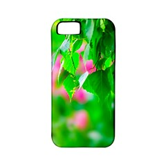 Green Birch Leaves, Pink Flowers Apple Iphone 5 Classic Hardshell Case (pc+silicone) by FunnyCow