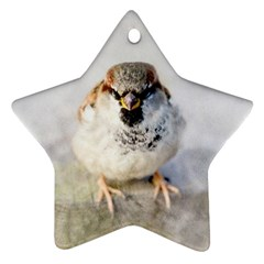 Do Not Mess With Sparrows Ornament (star)