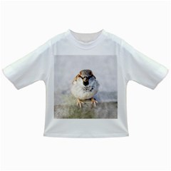 Do Not Mess With Sparrows Infant/toddler T Shirts