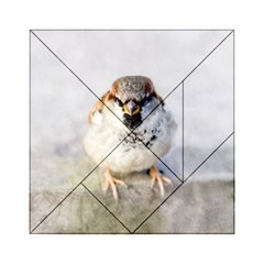 Do Not Mess With Sparrows Acrylic Tangram Puzzle (6  X 6 ) by FunnyCow