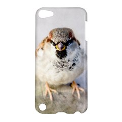 Do Not Mess With Sparrows Apple Ipod Touch 5 Hardshell Case by FunnyCow