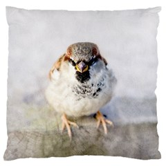 Do Not Mess With Sparrows Large Flano Cushion Case (two Sides)