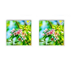 Crab Apple Flowers Cufflinks (square) by FunnyCow