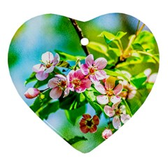 Crab Apple Flowers Heart Ornament (two Sides)