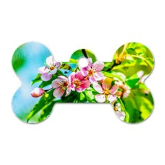 Crab Apple Flowers Dog Tag Bone (one Side) by FunnyCow