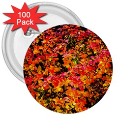 Orange, Yellow Cotoneaster Leaves In Autumn 3  Buttons (100 Pack)  by FunnyCow
