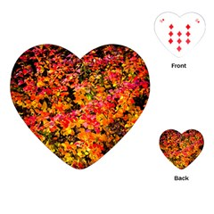 Orange, Yellow Cotoneaster Leaves In Autumn Playing Cards (heart)