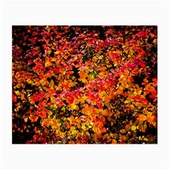Orange, Yellow Cotoneaster Leaves In Autumn Small Glasses Cloth (2 Side)