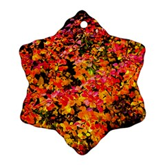 Orange, Yellow Cotoneaster Leaves In Autumn Snowflake Ornament (two Sides) by FunnyCow