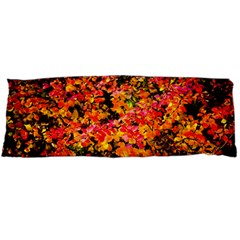 Orange, Yellow Cotoneaster Leaves In Autumn Body Pillow Case Dakimakura (two Sides) by FunnyCow