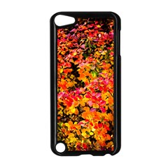 Orange, Yellow Cotoneaster Leaves In Autumn Apple Ipod Touch 5 Case (black) by FunnyCow