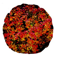 Orange, Yellow Cotoneaster Leaves In Autumn Large 18  Premium Round Cushions by FunnyCow