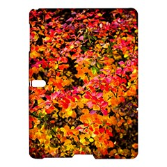 Orange, Yellow Cotoneaster Leaves In Autumn Samsung Galaxy Tab S (10 5 ) Hardshell Case