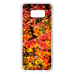 Orange, Yellow Cotoneaster Leaves In Autumn Samsung Galaxy S8 Plus White Seamless Case by FunnyCow