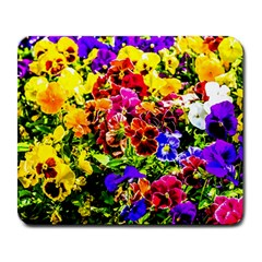 Viola Tricolor Flowers Large Mousepads by FunnyCow