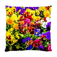 Viola Tricolor Flowers Standard Cushion Case (one Side) by FunnyCow