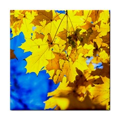 Yellow Maple Leaves Face Towel