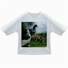 Muscovy Family Infant/toddler T Shirts