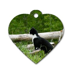 Farm Cat Dog Tag Heart (one Side)