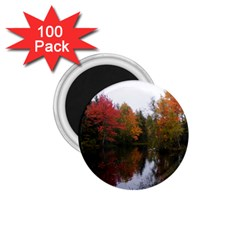 Autumn Pond 1 75  Magnets (100 Pack)  by IIPhotographyAndDesigns