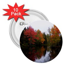 Autumn Pond 2 25  Buttons (10 Pack)