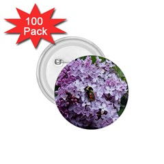 Lilac Bumble Bee 1 75  Buttons (100 Pack)