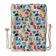 Funny Cute Colorful Cats Pattern Drawstring Bag (large)