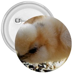Silkie Chick  3  Buttons