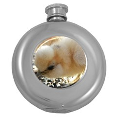 Silkie Chick  Round Hip Flask (5 Oz)