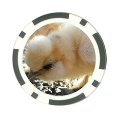 Silkie Chick  Poker Chip Card Guard